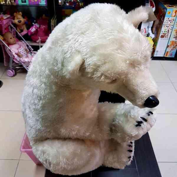 Medved-polarni-5