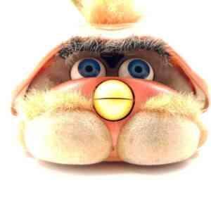 Furby Shelby (4)||Furby Shelby (1)||Furby Shelby (2)||Furby Shelby (3)||Furby Shelby (5)