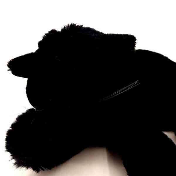Crna mačka (3)||Crna mačka (1)||Crna mačka (2)