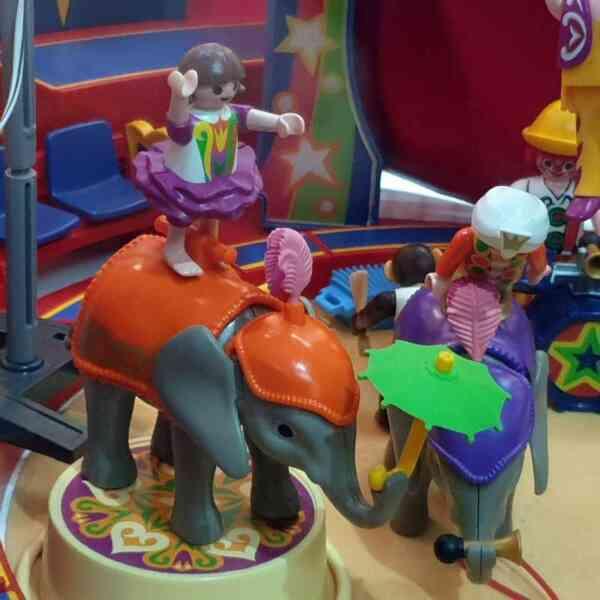 Playmobil cirkus 9 setova (17)