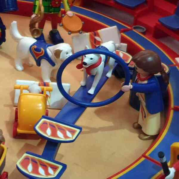 Playmobil cirkus 9 setova (18)