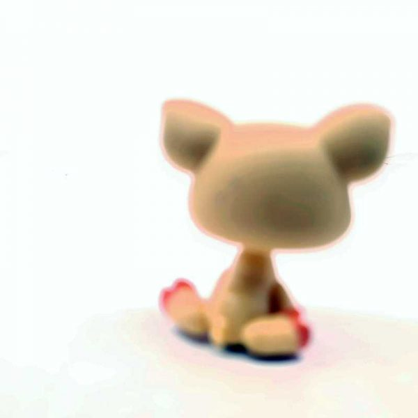 LPS Littlest Pet Shop 2006 prase (1)