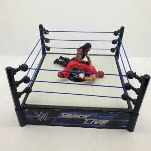WWE kečeri ring (5)