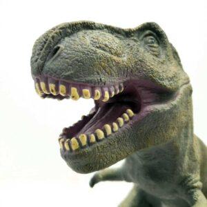 Dinosaurus Tyranosaurus ToysRUs 40 cm (3)