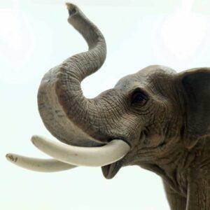 Figura Afrički slon Schleich (1)